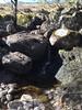 Bath time (What I saw...) Tags: loch arkaig river mountain stream bath wash