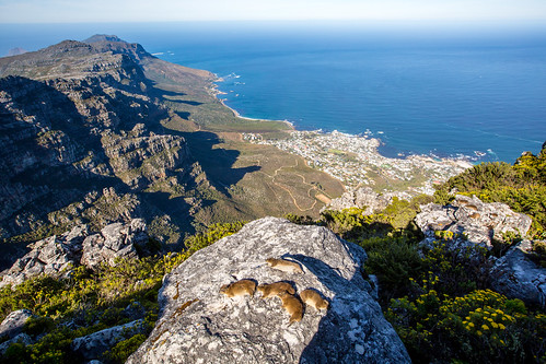 Kaapstad_BasvanOort-134