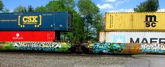 (timetomakethepasta) Tags: intermodal graffiti art freight train csx maersk benching selkirk new york photography