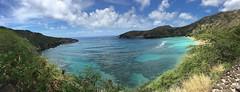 IMG_0682 (Bessandra) Tags: hawaii oahu hanaumabay