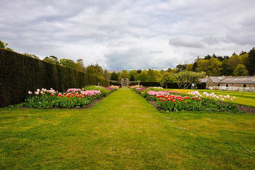 The Walled Garden at Culzean Castle