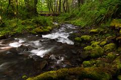 Gorton Creek Bridge (tyee01) Tags: columbia gorge oregon moss bridge nikon d500 1680mm