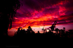 Red sky at night (Jasrmcf) Tags: sel50f18f ilce7 sony sonya7 sonyalpha bokeh bokehlicious bokehgraph dof nature ngc greatphotographers nighysky sky landscape night beautiful dreamy colourartaward colourful colours red purple dramatic silhouette