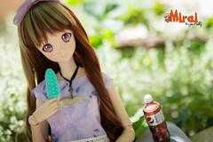 Mirai - Smart Doll 001 Mirai Suenaga (RozenPullip) Tags: smartdoll danny choo doll dd bjd sd dollfie dream clothe wig leekeworld eyes trixietrixie animetic resin vinyle summer sexy