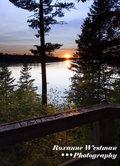Sunset over Lake Itasca (roxiesplacephotography) Tags: itasca mississippi lake sunset trees railing