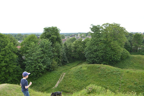 View from the Norman mound