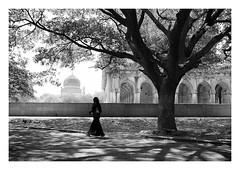 Qutub Shahi, Hyderabad (handheld-films) Tags: india hyderabad qutub qutb shahi tombs gardens ibrahimbagh islamic hindu persian blackandwhite monochrome