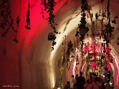 underground-tunnel-floraart_32