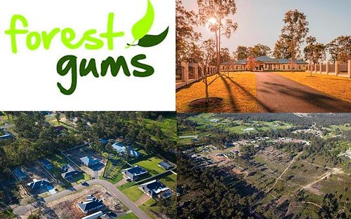 Lot 305 Woodlands Dr, Weston NSW