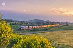 Golden Blue (BackOnTrack Studios) Tags: 07 077 07077 lyudmila ludmilla 232 231 bdz diesel locomotive pimk rail bulgaria kermen freight cargo train bulgarian railways golden hour sunset fals