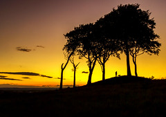 Seven Sisters Sunset (RichySum77) Tags: hill trees canon sigma uk landscape nature yellow orange colours evening silhouette