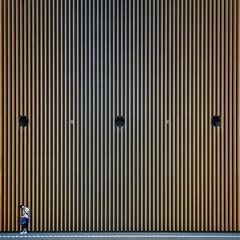The Waiting Wall (Paul Brouns) Tags: canonnederland canon liveforthestory architecture architectuur architektur архитектура wall walls pattern lines square minimalist minimal composition symmetry tokyo international forum atrium girl pose waiting aligned japan ventilation holes perspective elements bars wood wooden paulbrouns paulbrounscom paul brouns