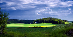 June blues (Joni Mansikka) Tags: nature summer outdoor landscape blue clouds green fields trees paimio suomi suomi100 finland finland100
