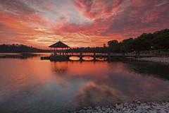 Epic Dusk Color (Jacobs LB Chong) Tags: sunset fiery skyline clouds cloudsformation reflection reservoir dusk landscape fujifilm fujifilmsg xt2 zeiss touit park singapore