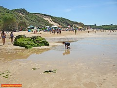 2017-06-18 Bluff Hayle.017 (Rock On Tom) Tags: phillack hayle harbour northquayhayle hayletowans