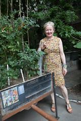 photoset: Kunst Haus Wien: Iris Andraschek - Sekundäre Wildnis (29.06.-08.10.17, Eröffnung)