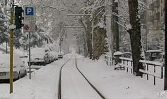 Rotaie per nessun dove. Milano (diegoavanzi) Tags: milano porta venezia binari neve snow inverno winter italia italy lombardia lombardy milan bianco white