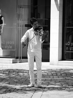 Geigen im Sommer in Bamberg