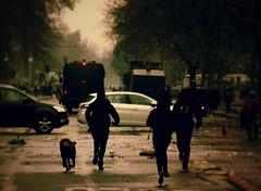 . (Felipe Smides) Tags: fotografía lomo felipesmides smides riot protestas protesta chile marcha autodefensa autodefensanoesterrorismo acciondirecta