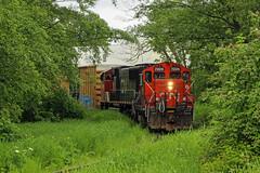 CN 7224 ~ Richmond (Chris City) Tags: train railway railroad branchline switcher spur industry cnr gp9rs wye overgrown richmond vancouver boxcar