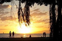 (Zebulon Dave) Tags: hawaii honolulu oahu waikikibeach sunset silhouette beach people usa unitedstates img3906rlexported