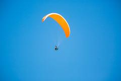 Black's Beach (Thomas Hawk) Tags: america blacksbeach california lajolla sandiego southerncalifornia torreypines torreypinesstatebeach usa unitedstates unitedstatesofamerica beach hangglider hanggliding paraglider paragliding fav10