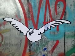 Sticker bird (emilyD98) Tags: collage wall mur insolite mouette bird sticker oiseau parc skate stnazaire streetart street art urban exploration city ville