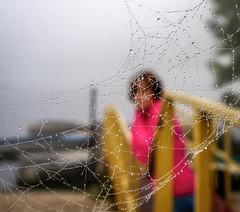 A woman which wait (kud4ipad) Tags: 2016 prokhorovka river bank cobweb fog pier boat bokeh