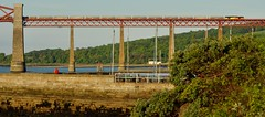 60076 Dunbar on the Forth Bridge (robert55012) Tags: forthbridge 6b32 60076 colas scotland