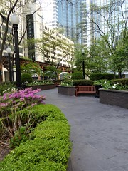 Chicago, Northern Trust Outdoor Public Garden, Looking North (Mary Warren (8.4+ Million Views)) Tags: chicago urban garden northerntrustgarden nature flora green bench blooms blossoms flowers azaleas pink lamps trees plants