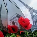 2017-05-26 Paris umbrella (11)f thumbnail