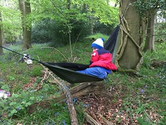 Lions & Leopards (Moulsford) Tags: lions leopards year2 forestschool outdoors summerterm2017