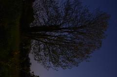 SPC_2267 (seansverige) Tags: moonlight naturallightphotography nocturnalphotography longexposure