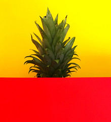 Joy (marcus.greco) Tags: joy fruit colors yellow red conceptual surreal ananas