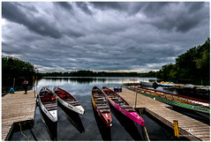 MAY 2017 NM1_4249_47822 (Nick and Karen Munroe) Tags: dragonboat dragonboats dragonboatraces water still calm lake heartlakeconservationarea heartlake heartlakeconservation reflection beauty brampton beautiful brilliant blue canada clouds colour colors color karenick23 karenick karenandnickmunroe karenmunroe karenandnick nikon nickmunroe nickandkarenmunroe nature nickandkaren nikond750 nikon1424f28 ontario outdoors b