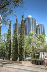 Spring Reflections (straehle) Tags: canon5dmkiii hdr losangeles california unitedstates exif:aperture=ƒ80 geo:lat=34050965 camera:make=canon geo:lon=11825602833333 geo:state=california geo:location=pegasusapartments geo:city=losangeles geo:country=unitedstates exif:model=canoneos5dmarkiii exif:lens=ef24105mmf4lisusm exif:isospeed=200 exif:focallength=35mm camera:model=canoneos5dmarkiii exif:make=canon