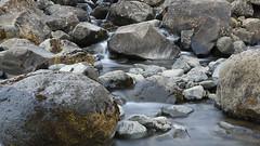 the simple joys to behold - HTT! (lunaryuna) Tags: iceland easticeland djupivegur nature microlandscape mountainbrook water rocks geology textures moss texturaltuesday lunaryuna