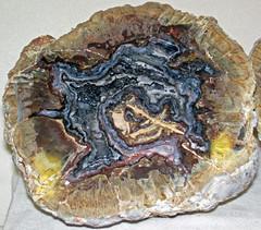 Agate-quartz nodule (Buchanan Ranch, Harney County, east of Burns, Oregon, USA) 1 (James St. John) Tags: agate quartz nodule buchanan ranch harney county burns oregon thunder egg eggs