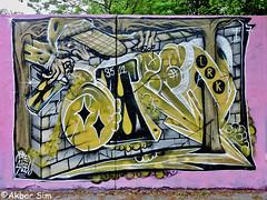 Den Haag Graffiti  STEEN (Akbar Sim) Tags: steen zuiderpark denhaag thehague agga holland nederland netherlands graffiti akbarsim akbarsimonse