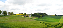 Landschaft im Eichsfeld (Tobi NDH) Tags: landscape landschaft eichsfeld countryside feld field nature natur sky clouds tree thüringen thuringia deutschland germany 2017 mai may grün green