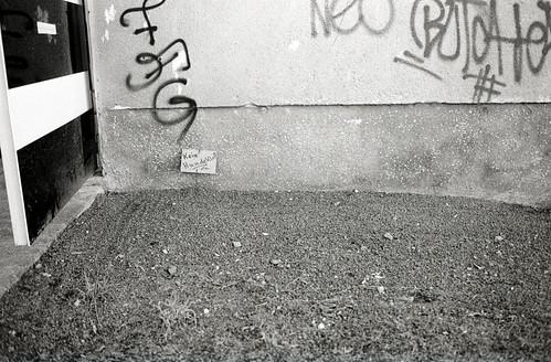 Kein Hundeklo! / not a dog's dropping ground!