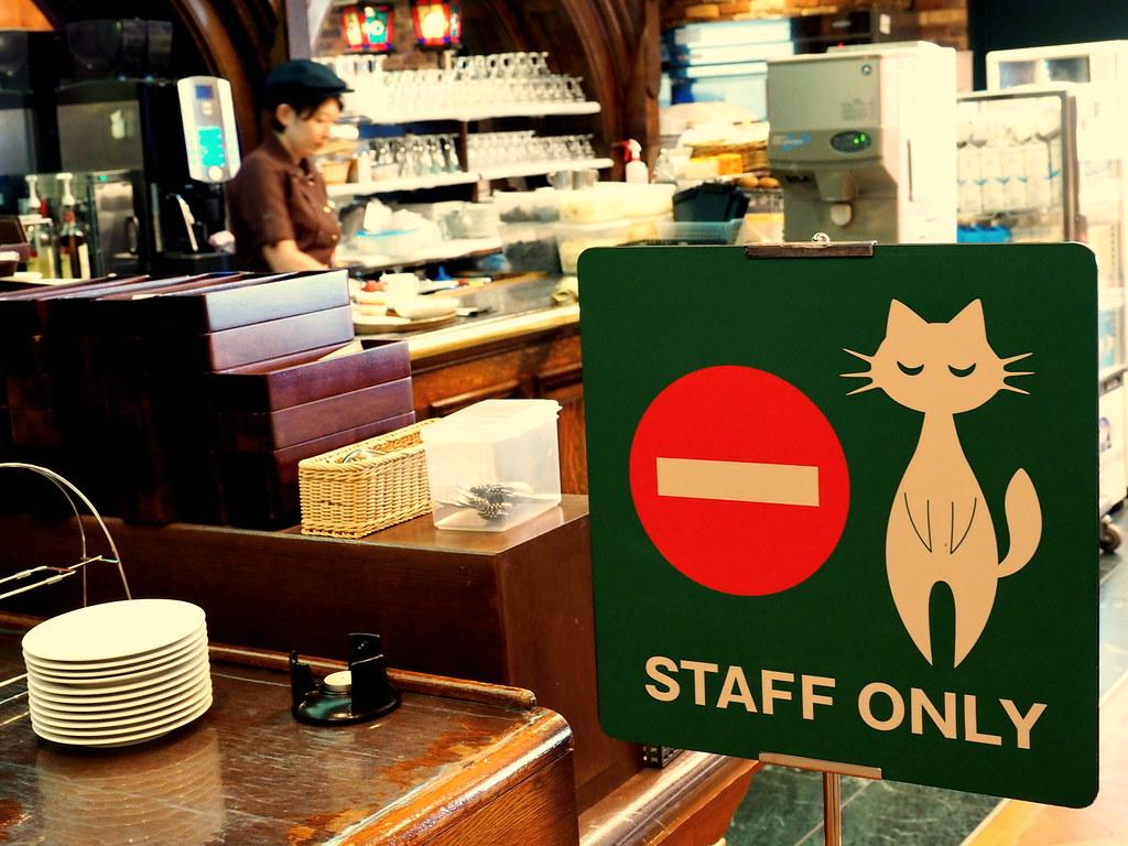 Cat Cafe In Hokkaido