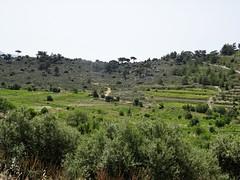 Passing the hidden plain. (Ia Löfquist) Tags: crete kreta hike hiking walk walking vandra vandring plain slätt fertile grönskande prunkande greenery grönska farming lantbruk