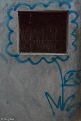 rendere simpatica una grata (Clay Bass) Tags: 12800 nikon saluzzo d750 grid murales natural night