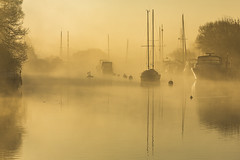 Mist on the Frome (Nick L) Tags: reflection landscape riverfrome frome yachts swans mist fog sunrise canon eos 5d 5d3 70200l28ii boats dawn dorset uk wareham dorsetmisty misty