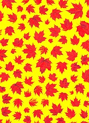 58188.10 Acer platanoides (horticultural art) Tags: horticulturalart acerplatanoides acer norwaymaple maple leaves pattern mosaic psychedelic