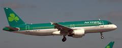 Airbus A-320 EI-DEK (707-348C) Tags: dublinairport dub eidw airliner jetliner airbus airbusa320 aerlingus ein collinstown dublin a320 eidek passenger lingus