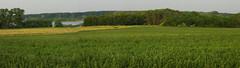 Rybníky v dálce 3 (Michael Kůr) Tags: českárepublika czechrepublic jižnímorava southmoravia dolníbojanovice pole field krajina landscape countryside