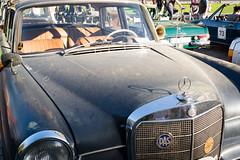 Oldenburger Classic Days - City Grand-Prix-14