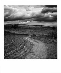 Dark clouds bring waters when the bright bring none.... (Missy Jussy) Tags: landscape lancashire land darkclouds clouds sky hillside fields sheep path dyke drystonewalls wall walkways mono monochrome blackwhite bw blackandwhite rochdale northwest england countryside canon 50mm ef50mmf18ll canon50mm canon5dmarkll moodylandscape